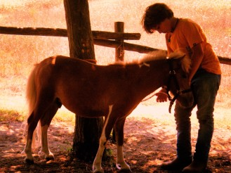 A_little_boy_and_his_pony
